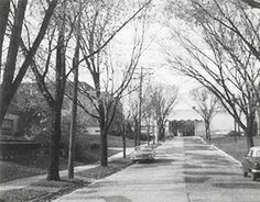 Chr. Hansen Milwaukee, 1970ies. The building at the end of the street was in use untill 2009 when it was torn down.