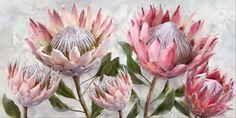 Protea Bunch Canvas Art Print Artwork Prints, Canvas Art Prints, Canvas Prints Australia, Protea Art, Flower Prints, Wall Art Decor, Decoupage, Painting, Floral Patterns