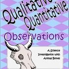 Qualitative & Quantitative Observation Lesson Free Science lesson; this teacher did it with her 3rd graders & they LOVED it but can be done with 2nd-6th! Can use materials other than bones if needed...