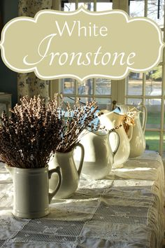 White Ironstone has an intriguing history. It began with the English's love for imported China tea served in the fine translucent ware from the Far East