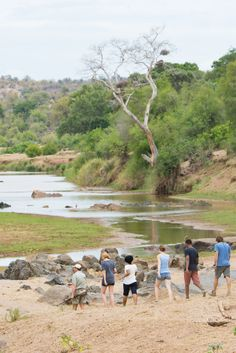 Enjoy a bushwalk through the Greater Kruger National Park during sunrise. Kruger National Park, National Parks, Special Interest Groups, Tourism Marketing, Private Games, Game Reserve, Best Places To Travel, Tent Camping, South Africa