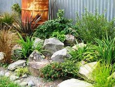 Rock garden for a great turtle garden - My Cotta - Cottage Garden Pond Rock garden for a great turtl Mediterranean Plants, Gravel Garden, Garden Projects, Planting Flowers, Plants, Cottage Garden, Rock Garden Design, Rockery Garden, Rock Garden