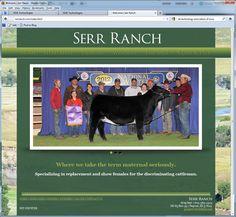 Serr Ranch: Green, Lanscape, Cattle