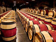 Wine Adventures in Bordeaux, France