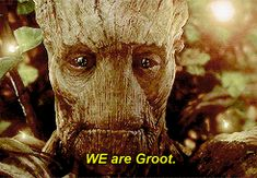 "rocket-ringtail-raccoon: "" "" We are Groot "" OMG LOOK AT THAT QUALITY AHHH """