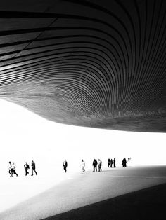 Aquatic Centre by Zaha hadid. Photog by Luke Hayes.