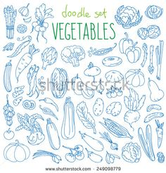 Set Of Various Doodles, Hand Drawn Rough Simple Sketches Of Different Kinds Of Vegetables. Vector Freehand Illustration Isolated On White Background. - 249098779 : Shutterstock