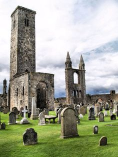 Saint Andrews Cathedral Ruins   Place to See in Scotland