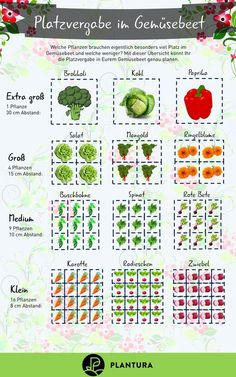 Planting raised beds: crop rotation & useful tips - Plantura - Allocation of sp. - Planting raised beds: crop rotation & useful tips – Plantura – Allocation of space in the vege - Backyard Vegetable Gardens, Vegetable Garden Design, Herb Garden, Container Gardening, Gardening Tips, Rotation Des Cultures, Crop Rotation, Plant Information, Square Foot Gardening