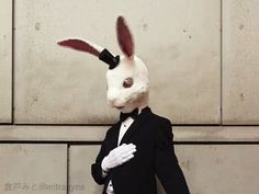 Discover recipes, home ideas, style inspiration and other ideas to try. Rabbit Life, Rabbit Head, Character Aesthetic, Character Design, Mask Drawing, Drawing Art, Creepy Dude, Object Heads, Rabbit Drawing
