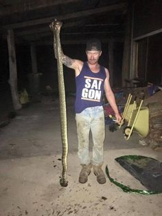 The whole thing went down in the northern NSW town of Macksville, and the snake has since been removed from the house. | This Mother Found A Huge Snake In Her Son's Bed Biting His Face