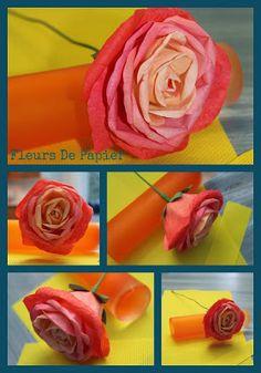 Fleurs De Papier: Rose orange dégradée