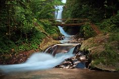Git-git waterfall is a famous tourist destination in the north part of Bali, located in Git-git countryside, Sukasada sub district, Buleleng regency, about 10 kilometers from Singaraja Town and about 2 hour from Ngurah Rai International Airport with drive a car. To reach the waterfall, I must follow the walkway down until the spot point. The air is cool and fresh, and the water look so clear and very fresh.