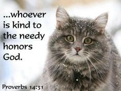 ...Whoever is kind to the needy honors God. ~Proverbs 14:31