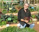 John harvesting some lettuce for lunch