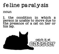 I knew this was a real condition! Lol!