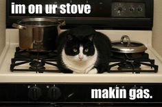 on your stove