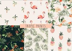 Tropical Pack Seamless Patterns by Annet Weelink Design on @creativemarket