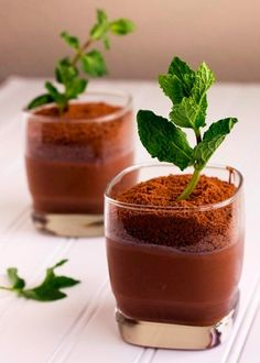 """A deliciously creative treat to present to your hungry guests. If you didn't know any better, you would think this was actually a small house plant. Fill your """"pot"""" with some homemade chocolate pudding and crush Oreos to make the """"dirt."""" Place a mint sprig or any other small plant in each pot to top of the final product!"""