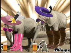 Elefantenladys