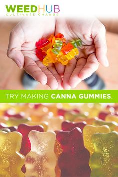 Here is a simple recipe for you to try making Canna Gummies! Here is a simple recipe for you to try making Canna Gummies! Weed Recipes, Marijuana Recipes, Cannabis Edibles, Marijuana Butter, Salve Recipes, Fast Recipes, Cannabis Oil, Healthy Recipes, Sweets