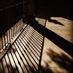 Sombras del centro. Shots, Stairs, World, Home Decor, Shades, Centre, Stairway, Decoration Home, Room Decor