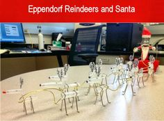Eppendorf Reindeers and Santa -  A Christmas creation by Abigail Bloy and her  Friend using Eppendorf tubes