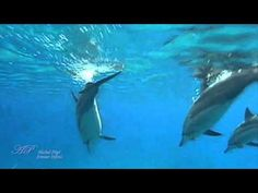 ♥ Michel Pépé - Amour Infini ♥ (Relaxing, soothing music) - YouTube