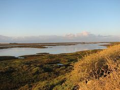Ria Formosa the heart and soul of Tavira Ria Formosa, Great Memories, Algarve, Natural Wonders, Great Places, Islands, Portugal, National Parks, Places To Visit