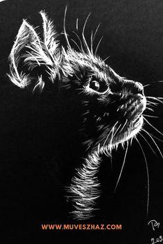 Cica rajz-HOGYAN RAJZOLJUNK CICÁT? – 3 +1 EXTRA MEGOLDÁS! Drawings, Movies, Movie Posters, Painting, Animals, Art, Art Background, Animales, Films