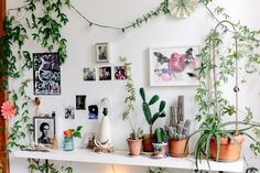 So, You Want to Grow an Indoor Garden...A Guide to Getting Started