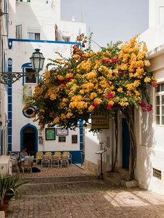 Albufeira, Portugal - a coastal city in the southern Algarve region Photo Portugal, Visit Portugal, Spain And Portugal, Portugal Travel, Faro Portugal, Portugal Trip, Places Around The World, Oh The Places You'll Go, Places To Travel
