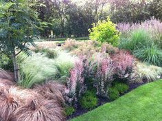 what an impact grasses can make when grouped together...if only I had the room John's Garden Part 1 : Grows on You