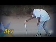 AFV's Top 10 - Roman Candle Canine | Kids | AFV