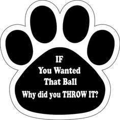 If You Wanted the Ball Why Did You Throw it? Paw Print Car Magnet 5 1/2' ** Details can be found by clicking on the image. (This is an affiliate link and I receive a commission for the sales)