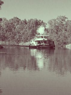 Paddle steamer on the Murray River. Mail and supplies were brought to the isolated cattle stations via river steamers and schooners. These steamers even played a role in the exporting of cattle from this region to Australian and Asian markets. Treacherous shoals, sandbars and tidal flows in the crocodile infested waters of the Victoria River made these trips anything but tame.