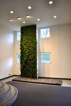 Tecverde vertical garden green wall