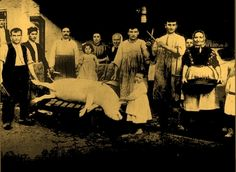 Photo from 1904: family during the traditional pig slaughtering ('matanza')