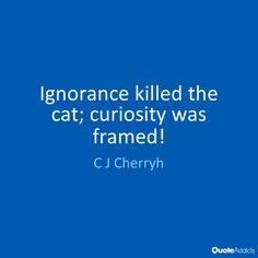 Curiosity Killed The Cat Quotes | Quote Addicts