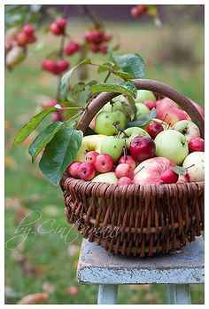 Day 10: What says autumn more than apple picking season and hot cider? #stageahome #inspireabuyer
