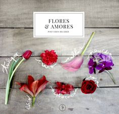 Flores lindas para presentear no Dia dos Namorados! Floral, Sparkle, Valentines, Romantic, Graphic Design, Inspiration, Vogue, Home Decor, Red Tulips
