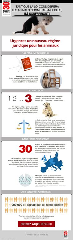 Signez la pétition : Pour un nouveau statut juridique de l'animal - Fondation 30 millions d'amis #animaux #petition #infographie