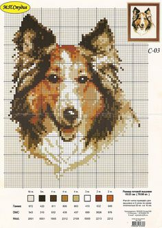Lassie (bbj2049)  1/1