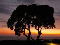sunset @Big Island