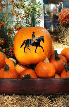 Equestrian styled pumpkin!