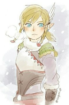 Link is his rito outfit