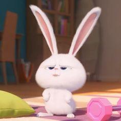 Funny Phone Wallpaper, Cute Disney Wallpaper, Cute Cartoon Wallpapers, Cute Wallpaper Backgrounds, Funny Cartoon Characters, Cartoon Jokes, Snowball Rabbit, Cute Bunny Cartoon, Rabbit Wallpaper