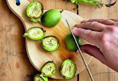 Je čas na přípravu svatojánské ořechovice, do Vánoc se uleží - iDNES. Alcoholic Drinks, Beverages, Avocado Toast, Sprouts, Cucumber, Pesto, Food And Drink, Vegetables, Fruit