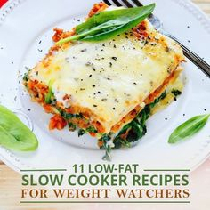 11 Low-Fat Slow Cooker Recipes for Weight Watchers - These are delicious too!! #wwpointsrecipes #weightwatcherecipes #weightwatcherscrockpotrecipes