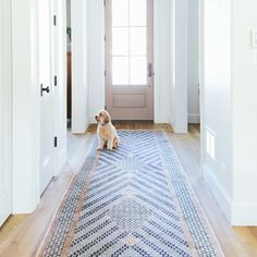 Best hallway runner blue mosaic pattern rug in a white hallway with a dog sitting on Entryway Runner, Entryway Rug, Hallway Rug, Hallway Ideas, Hallways, Narrow Entryway, Long Hallway, Entryway Ideas, Rug Runners